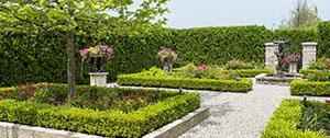 Aanleg nieuwe tuin met vijver